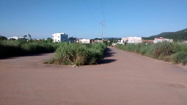 Numa das principais avenidas de acesso ao bairro o mato tomou conta dos canteiros