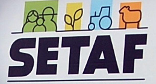 setaf